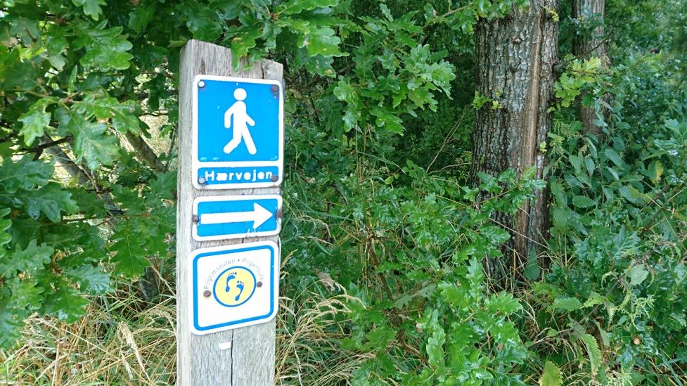 Sign at the start of Hærvejen trail
